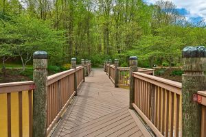 Meadowlark Gardens Bridge by somadjinn