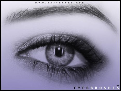 EyeBrushes01 by SuitePSDs
