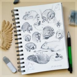 Sketches from local zoo by Si-Luetta