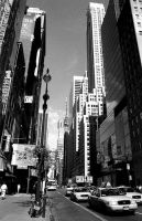 New York - 5th Avenue by geriphoto