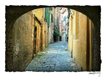 Old town of Siena by AnteAlien