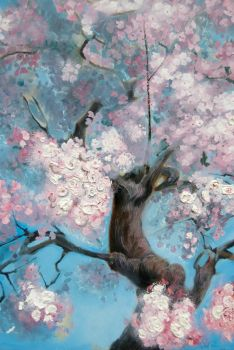 Cherry Blossoms by Charles-Burggraf