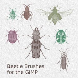 Beetle brushes for the GIMP by vostrasalute