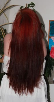 it was red and long by siobhan06