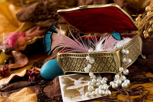 Ballet Dancer's Jewel-box by antiparticle