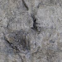 Stone - Texture - seamless by anul147