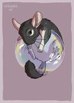 Chinchilla by LaniusRios