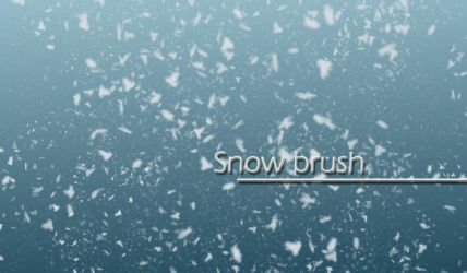 Snow brush by carocha
