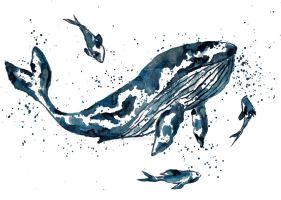 Watercolor Whale in Blue by MarcHorn