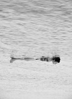 Somewhere by StrangerLyri