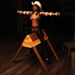 Pillory Challenge 5 - Western by Dracis3D