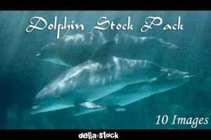 Dolphin Stock-Pack 10 Images by Della-Stock