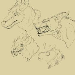 Quick sketches by AmberSpyder
