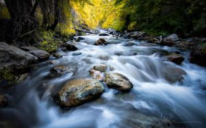 2017 Utah Fall Stream by jdmimages