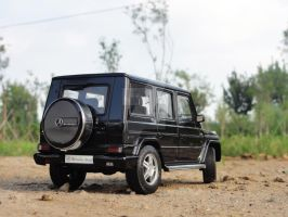Mercedes-Benz G-wagon by COMMANDER--WOLFE