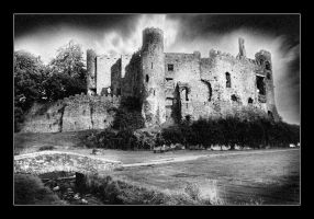 Laugharne Castle by seancoetzer