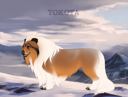 Willow 33736 by TotemSpirit