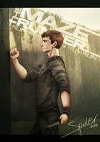 The Maze Runner by spider999now