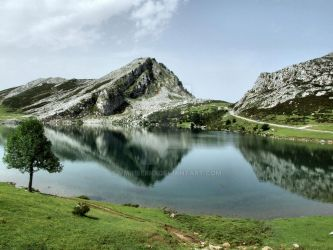 Enol lake in Covadonga, Asturias by vmribeiro