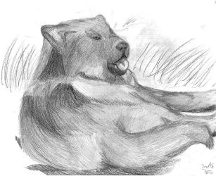 Resting Wolf by AltaikaTau