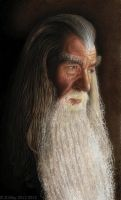 GANDALF by orinoco1973