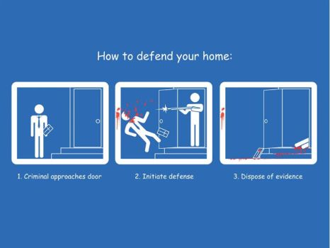 How to Defend Your Home by Pyzi