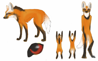 new maned wolf character by okami-wildclaw