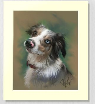 Pet Portraits by SteveDeLaMare