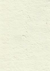 paper_tiger_stock_texture_05 by hookywooky