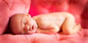 baby love by TimelessImages
