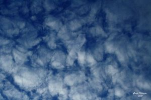 Feathers in the sky by graciferblue