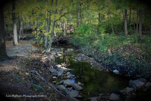 October creek by lisahuffman2001