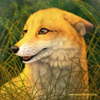 Foxy Smile 2 by Vanory