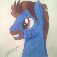 Pony Persona Head Shot by Music-S-Brush