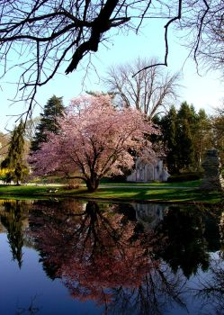 Spring In Spring Grove Cemetery by JeffsStudio