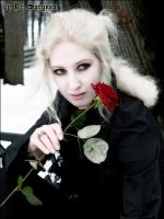 Winter Lestat XIII by doctor-surgeon