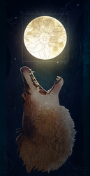 Coyote and the Moon by SashaWren