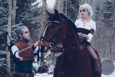 The Witcher - Going Home by Mirish