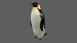 3D Emperor Penguin by mike-c-hall