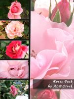 Roses Pack by ALP-Stock