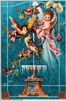 Victorian Advertising - Fountain of Youth + Beauty by Yesterdays-Paper