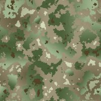 Gradient Camouflage by madcomputerscientist