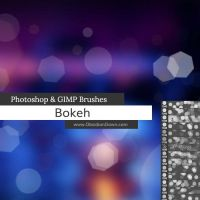 Bokeh Photoshop and GIMP Brushes by redheadstock
