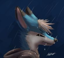 Rain of Feelings by NeDiiTV