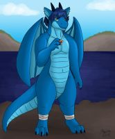 Windward Dracos by PudgeyRedFox