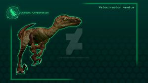 Carnivores Corporation : Velociraptor by PivotNazaOfficial