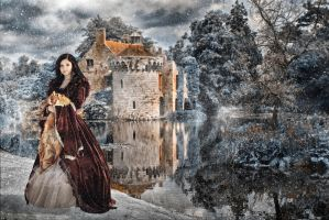 Lady in winter by TomasLepka
