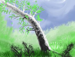 Tree birch speed paint SketchThis by SvartabergetArt