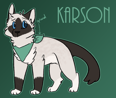 Kitty Karson Reference by Spiritpie