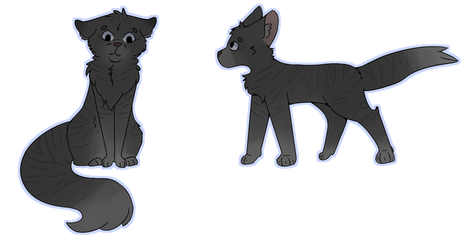 Flashpaw | Reference Request by Sockofpancakes
